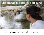 Azucena Purga