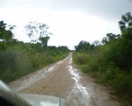 Largos caminos